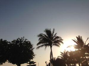 Mumbai coastline at dusk...check out the kites!!